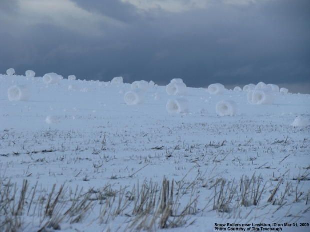 snowrolls